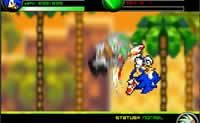 Play Final fantasy sonic x