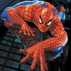 Play Spiderman memory